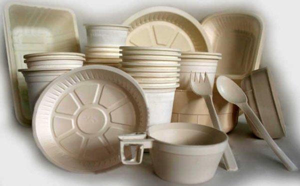 فروش ظروف یکبار مصرف گیاهی تهران