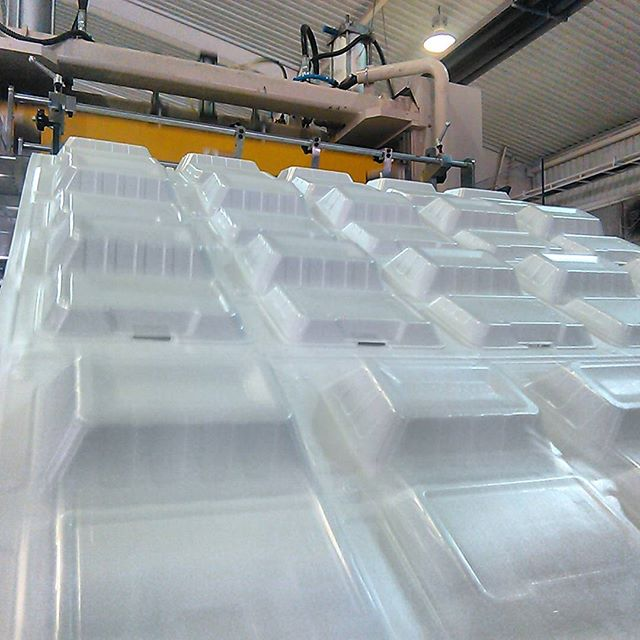تولید کننده ظروف یکبار مصرف فوم