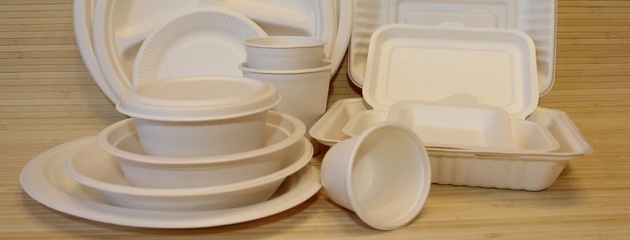 کارخانه ظروف یکبار مصرف گیاهی