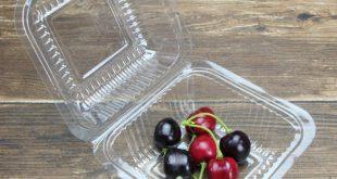 ظروف یکبار مصرف میوه