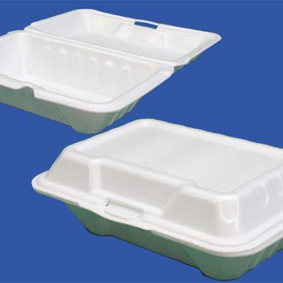 ظروف یکبار مصرف غذای بیرون بر