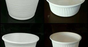ظروف یکبار مصرف گیاهی نمایندگی تهران