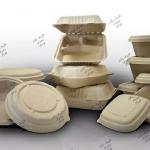 فروشنده ظروف یکبار مصرف گیاهی