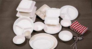 خرید ظروف یکبار مصرف از کارخانه