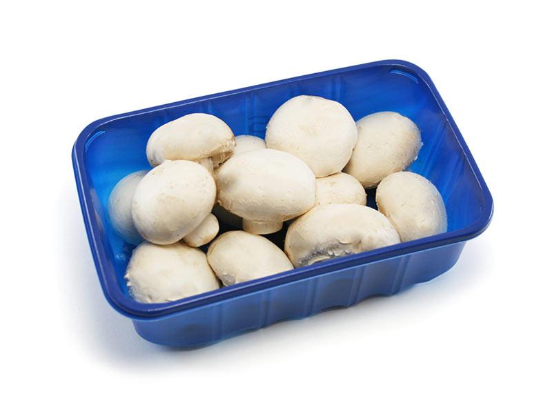 ظروف بسته بندی قارچ