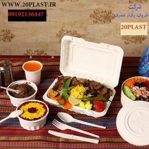 ظروف یکبار مصرف برای غذای گرم